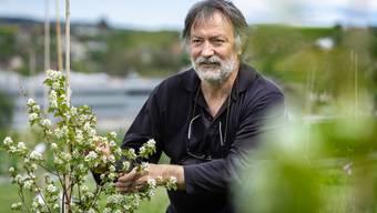 Landschaftsarchitekt und Projektleiter Victor Condrau begutachtet eine Blüte der Erlenblättrigen Felsenbirne.