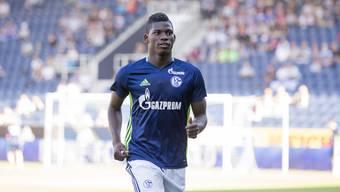 Wann Breel Embolo in Gelsenkirchen wieder auf Torejagd gehen kann, ist unklar. Der Schweizer Nationalstürmer erlitt im Aufbautraining einen Rückschlag – weil Schalke auf Wunderheilungen setzte?