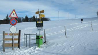 Bei ordentlichem Schneefall können sich hier nicht nur Wanderer und Naturfreunde, sondern auch Skifahrer austoben.