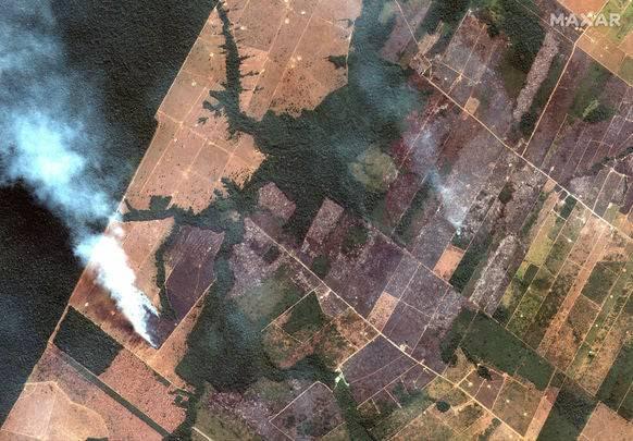 Brände und gerodete Waldfläche im Amazonasbecken.