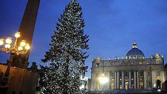 Der Weihnachtsbaum auf dem Petersplatz