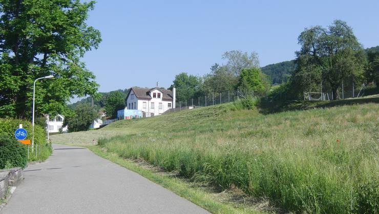 Die ungemähte Wiese bis zum Hydranten wird als Bauland für Wohnhäuser freigegeben