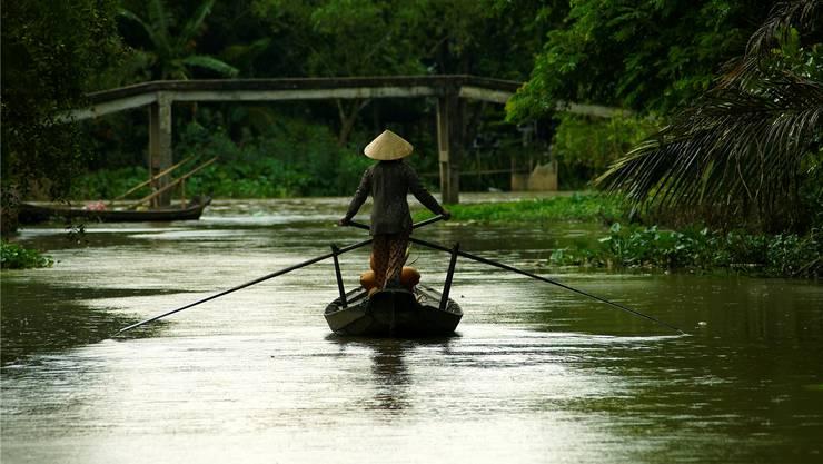 Vor allem entlang dem Mekong tauchten behandlungsresistente Malaria-Erreger auf.Thinkstock