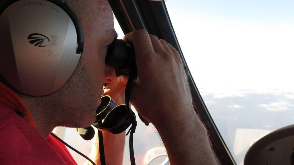 Während dem Suchflug.