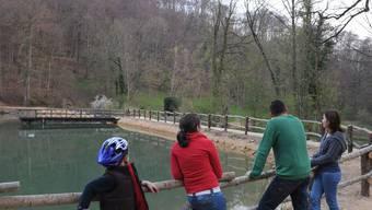 Auf dem Bild ist die neusanierte Dammkrone in Arlesheim