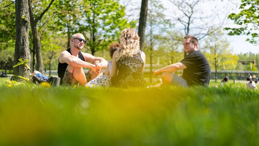 sommer picknick