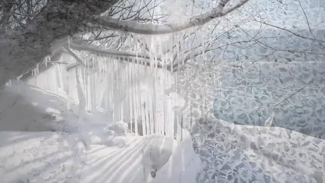 So schön war die russische Kältepeitsche