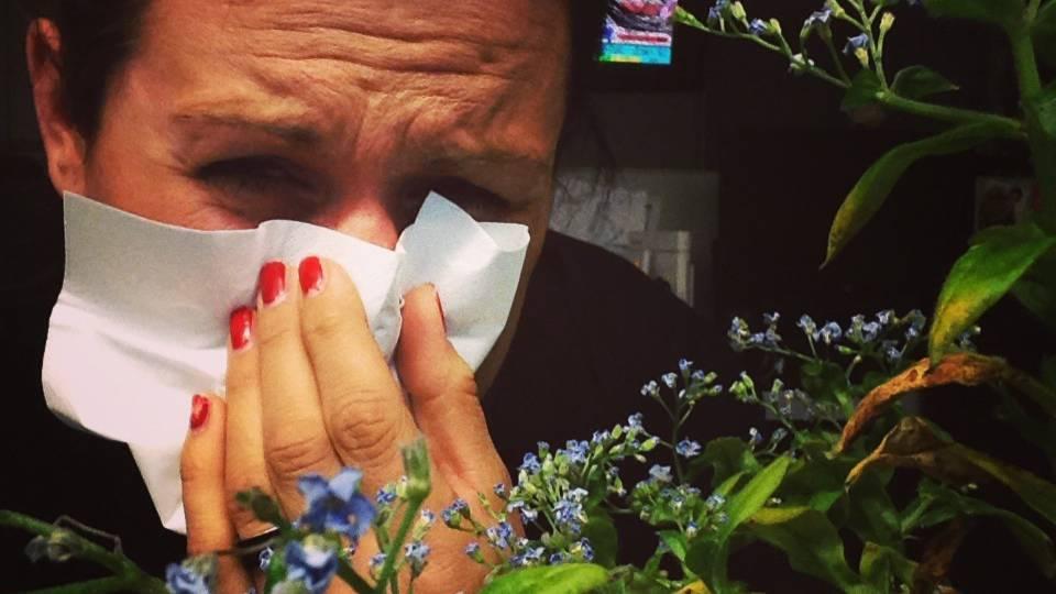 Vernetzt: Schweizer App für Pollenallergiker