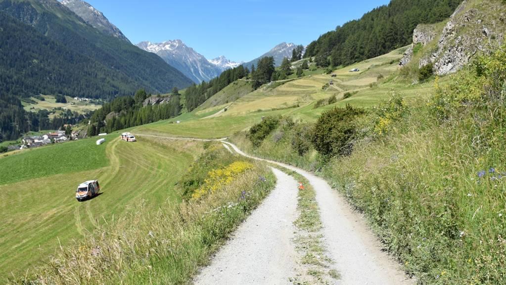 Am Mittwochvormittag stiessen auf dem Feldweg in Ardez zwei E-Bike-Fahrer frontal zusammen.