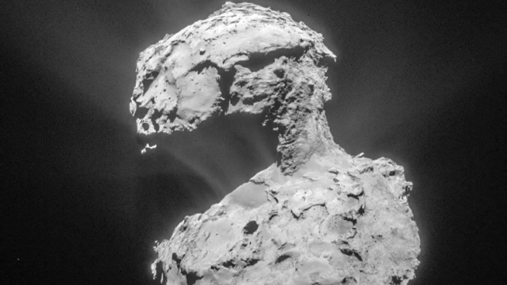 Schwachstelle ist die Verbindung der beiden Teile, der Hals zwischen Kopf und Körper: Eine Aufnahme des Kometen Tschuri.
