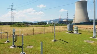 Im Frühling sollen die Bauarbeiten für das neue Pumpwerk im Aarefeld beginnen. Im Vordergrund die Wetterstation.