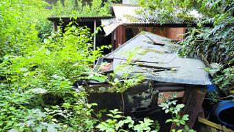 Verwildert: Das Bord unterhalb der Lengnaustrasse sieht aus wie ein verlassenes Guerillalager. khg