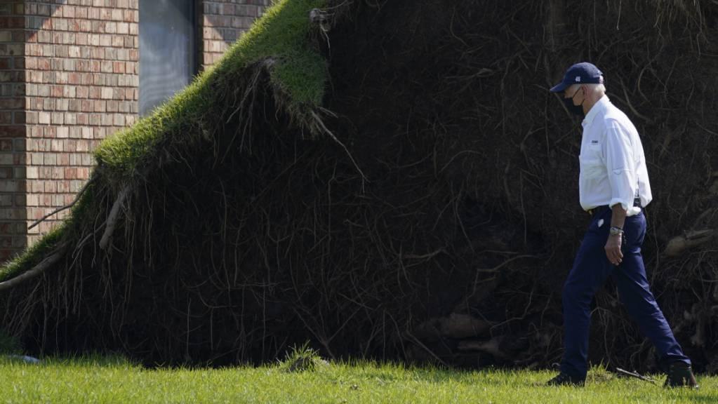 US-Präsident Joe Biden läuft an einem großen entwurzelten Baum vorbei, als er in LaPlace, Louisiana, selbst ein Bild von den Sturmschäden macht. Foto: Evan Vucci/AP/dpa