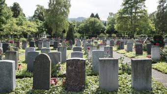 Friedhof Sihlfeld Zürich (Archiv)