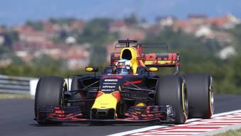 Daniel Ricciardo war in Ungarn im ersten Training der Schnellste.