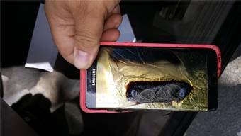 Explosive Ware: Samsung-Smartphones des Modells Galaxy Note 7 gehen in Flammen auf (Themenbild)