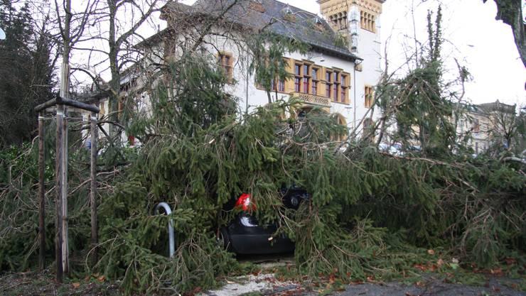 Sturm Burglind liess einen Baum auf dieses parkierte Auto stürzen.