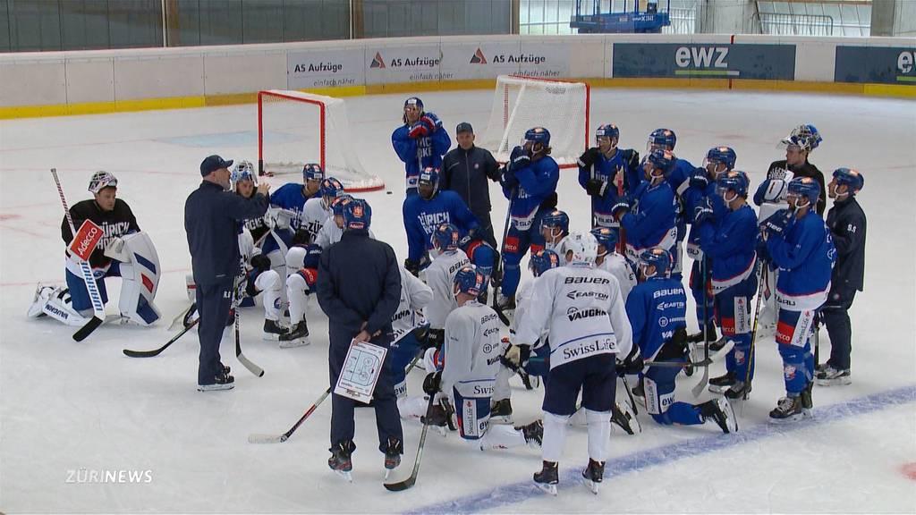 ZSC Lions zurück auf dem Eis