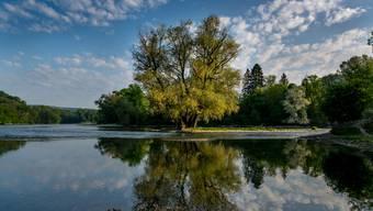 Das Programm «Natur 2030» soll nahtlos an das laufende Programm «Natur 2020» anknüpfen.