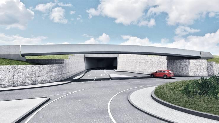 Geplante Umfahrung mit der Rad- und Gehwegbrücke Schürmatt und dem Südportal des neuen Tunnels.