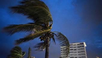 """Der Hurrikan """"Dorian"""" ist über den nördlichen Bahamas fast zum Stehen gekommen. Zerstörerische Winde mit Geschwindigkeiten von bis zu 270 Kilometer pro Stunde tobten am Montag über der Insel Grand Bahama.(Bild vom 1. September)"""