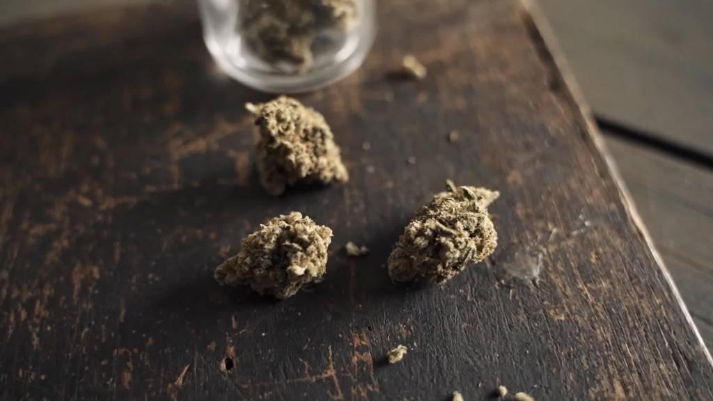 Heimlicher Konsum: HSG forscht zu Cannabis in Gesellschaft