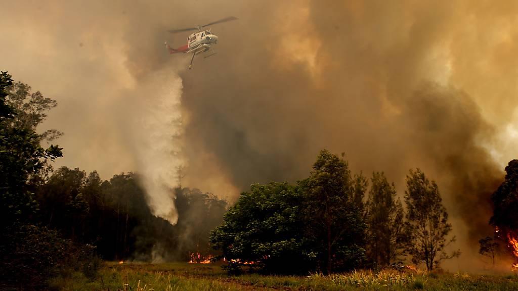 Mindestens drei Tote durch verheerende Buschfeuer