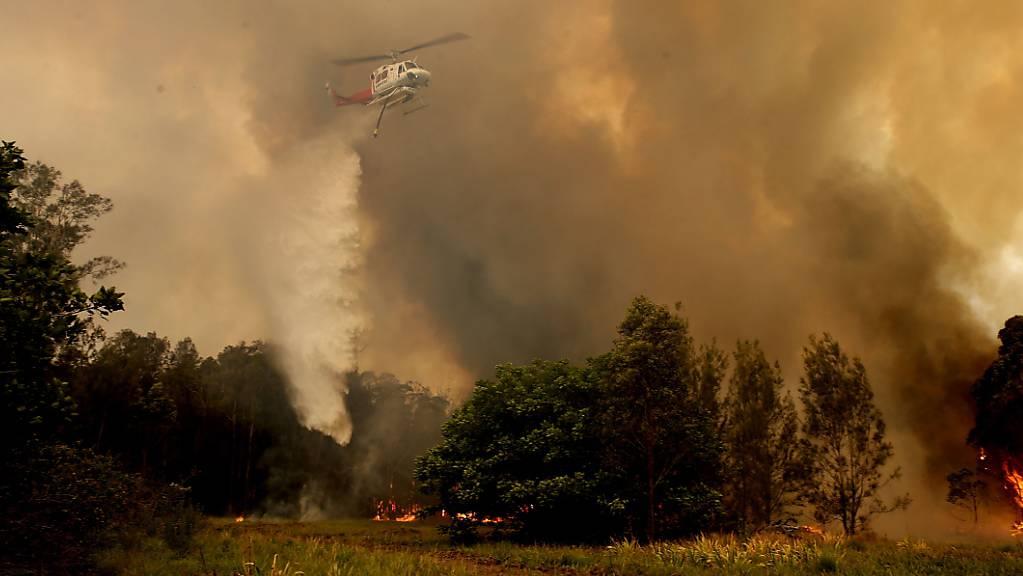 In Australien lodern rund hundert Buschfeuer in den Bundesstaaten New South Wales und Queensland auf einem rund tausend Kilometer langen Streifen entlang der Ostküste.