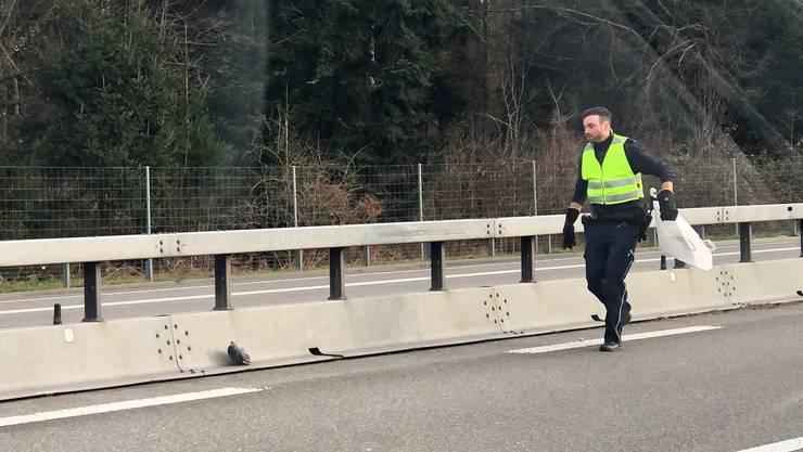 Die Kantonspolizei Aargau rückte am Montag zu einem Einsatz der speziellen Art aus.