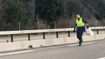 Taubenfangaktion Autobahn