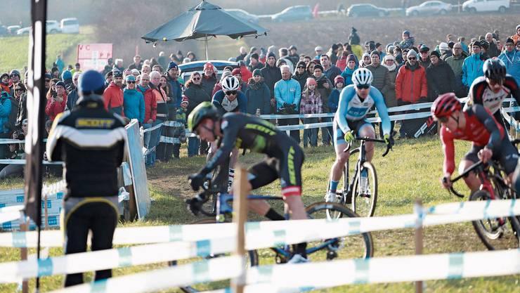 Bei perfekten Konditionen und viel Zuschauerauflauf gingen gestern auf der Baldegg die Schweizer Meisterschaften im Radquer über die Bühne.
