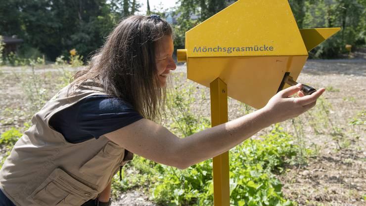 Petra Zajec auf dem Naturpfad des Naturzentrums Birdlife am Klingnauer Stausee, das dieses Wochenende mit einem grossen Fest eröffnet wird.