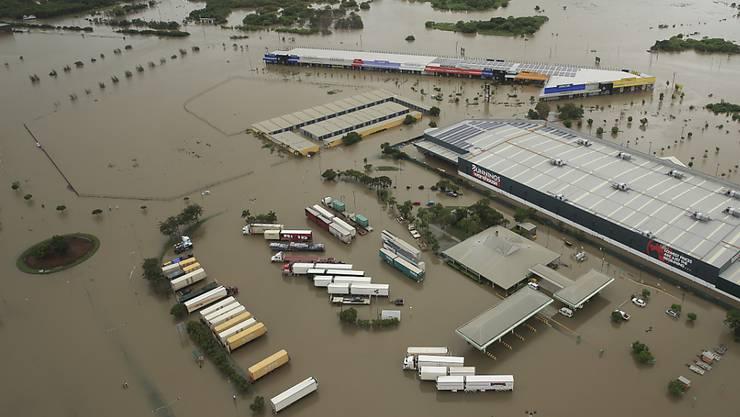 Land unter in Queensland: Das verheerende Hochwasser im Nordosten Australiens hat zu einem Massensterben von Rindern geführt. (Archiv)