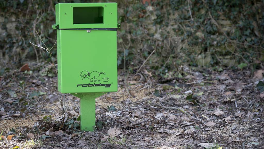 Digital: Dog Toilets