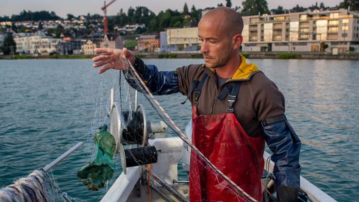 Bei einer Ausfahrt zeigt der Berufsfischer Samuel Weidmann, welches Ungut in seinen Netzen landet.