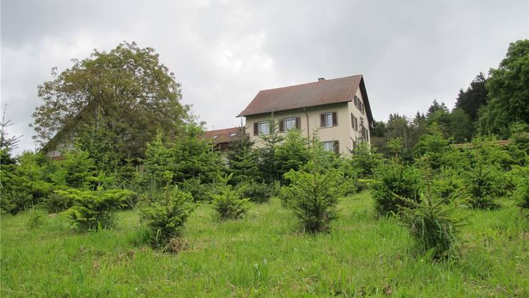Der Haldenhof kann seinen Pferdebetrieb erweitern, dank der Gemeindeversammlung.