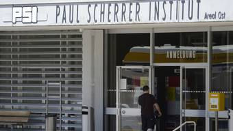 Die Quasiteilchen, die Forscher am Paul-Scherrer-Institut nachgewiesen haben, wurden 1941 theoretisch beschrieben. (Archiv)