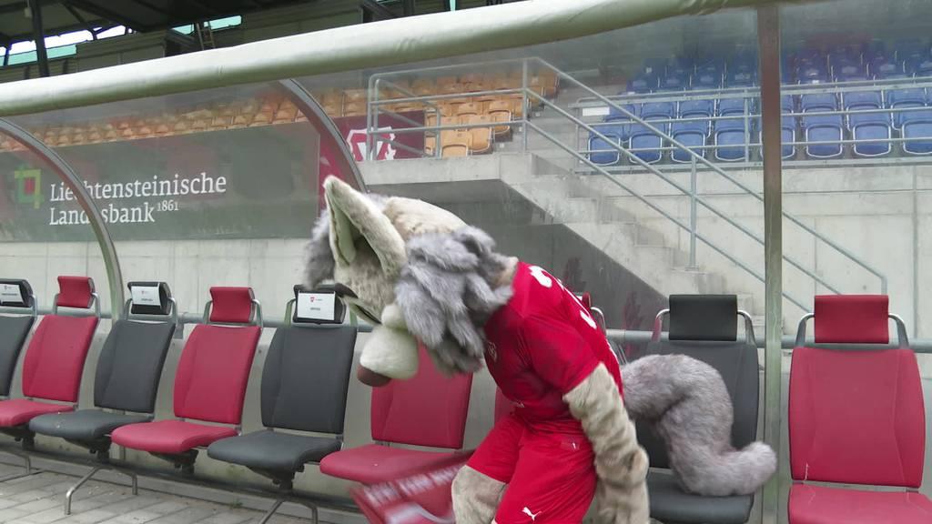Maskottchen gesucht: FC Vaduz braucht neuen Fanunterhalter