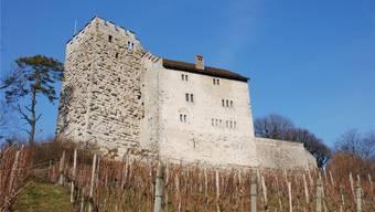 Beim VHS-Kurs am Mittwoch, 20. Februar, geht es darum, wie stark die Habsburger den Aargau geprägt haben. Archiv AZ/Katja Schlegel