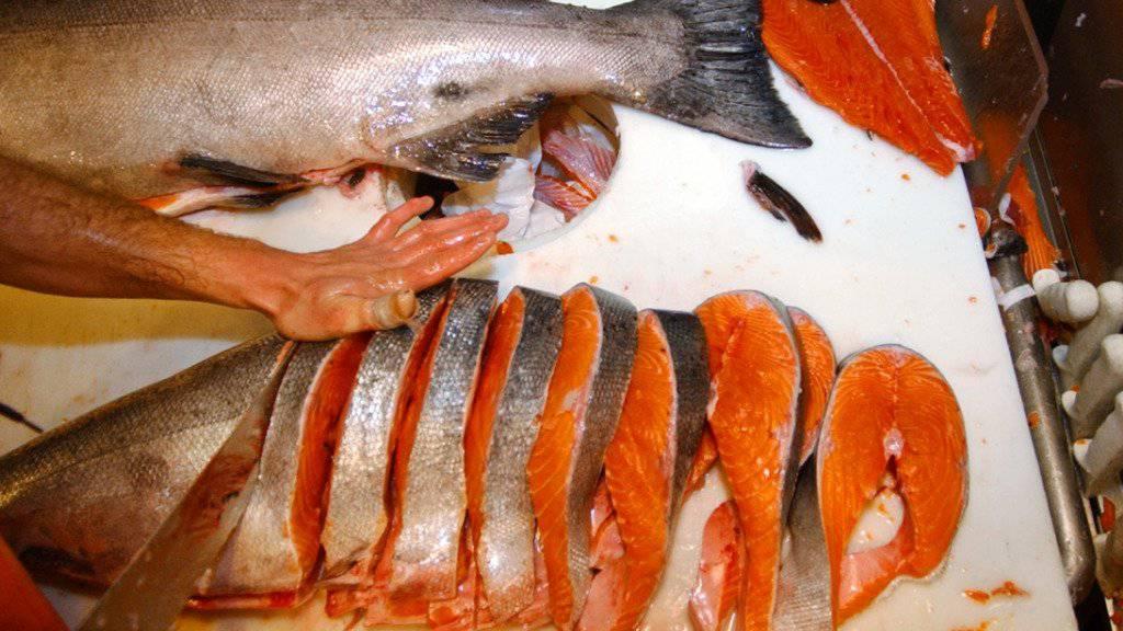 Lachs ist in der Schweiz der mit Abstand beliebteste Speisefisch. Insgesamt betrug die Verkaufsmenge im letzten Jahr 3333 Tonnen. (Archivbild)