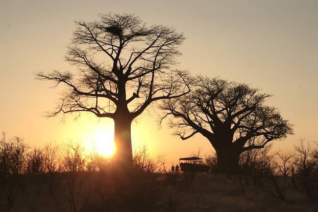Platz 3: Simbabwe – Simbabwe ist eines der sichersten Reiseziele in Afrika. Nicht nur die Nationalparks, in denen man den Big Five (Löwe, Nashorn, Leopard, Büffel und Elefant) begegnen kann, sonder auch dir prächtigen Victoria-Fälle locken die Besucher 2019 in den Süden des afrikanischen Kontinents.