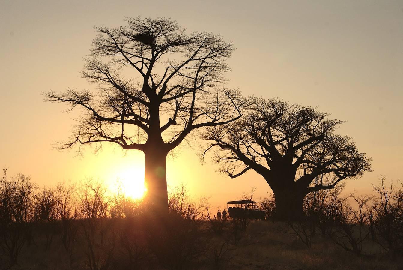 Platz 3: Simbabwe – Simbabwe ist eines der sichersten Reiseziele in Afrika. Nicht nur die Nationalparks, in denen man den Big Five (Löwe, Nashorn, Leopard, Büffel und Elefant) begegnen kann, sonder auch dir prächtigen Victoria-Fälle locken die Besucher 2019 in den Süden des afrikanischen Kontinents. (© Unsplash)