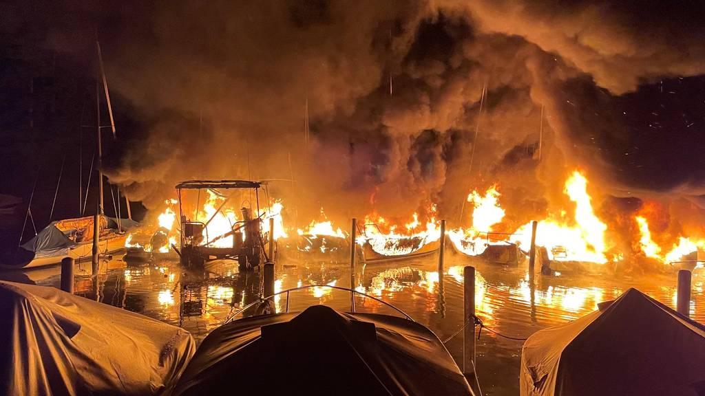 Grossbrand in Segelhafen Lachen (SZ): Zehn Schiffe zerstört und Schaden in Millionenhöhe