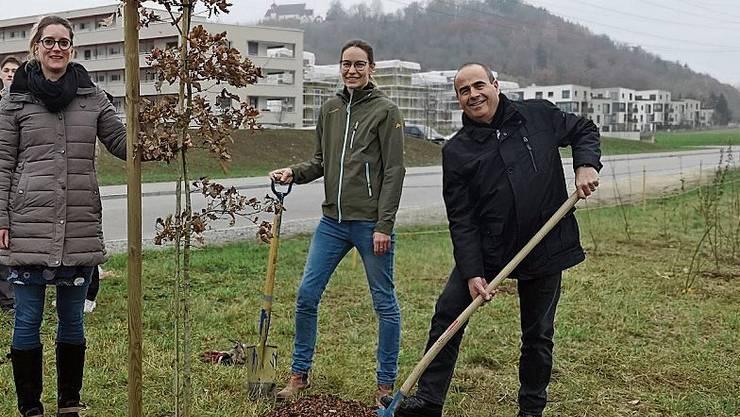 Gemeindeammann Otto Moser sowie die Gemeinderätinnen Denise Berger und Katja Früh (l.) beim Pflanzen der Eiche.Bild: uhg