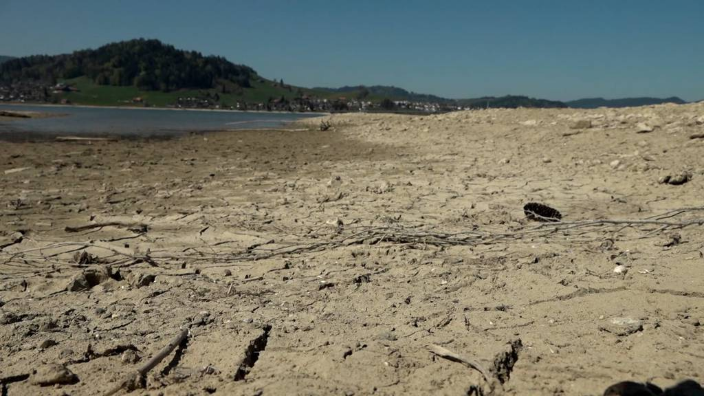 Sihlsee wird wegen Trockenheit zur Wüstenlandschaft