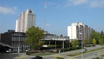 Die Verwaltung der Liebrüti-Siedlung kämpft gegen die Krähenplage im Quartier – und hat nun wohl die Schonfrist für die Vögel verletzt. MF/Archiv