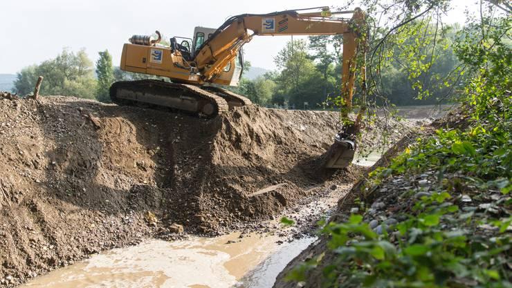 Am Freitag floss erstmals Limmat-Wasser in das neue Nebenflussbett auf der Grien-Insel, nachdem ein Bagger den Damm abtrug.
