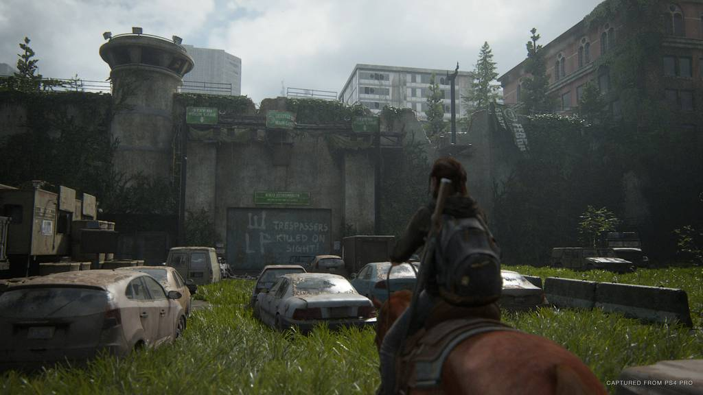 Last of Us Screenshot 1