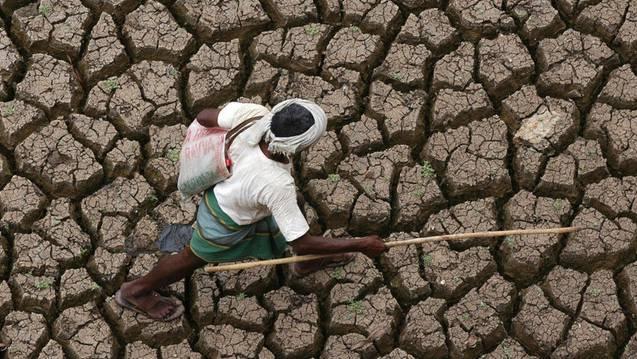 Die zentralen Regionen Indiens sind von der Dürre besonders betroffen.