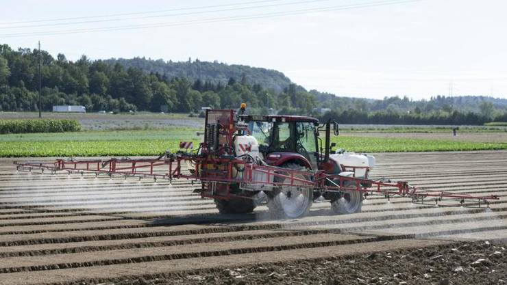 Die Anwendung von Pflanzenschutzmitteln, welche den Wirkstoff Chlorothalonil enthalten, ist seit Beginn dieses Jahres verboten. (Symbolbild)